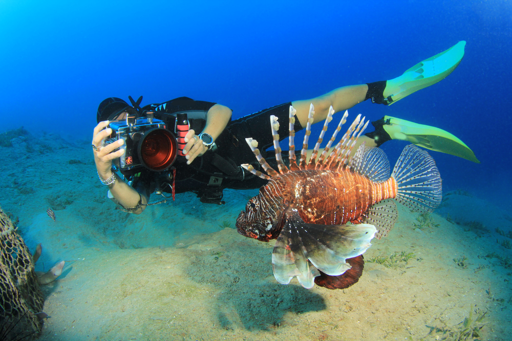 PADI Scuba Diver Specialty Course - Underwater Photography