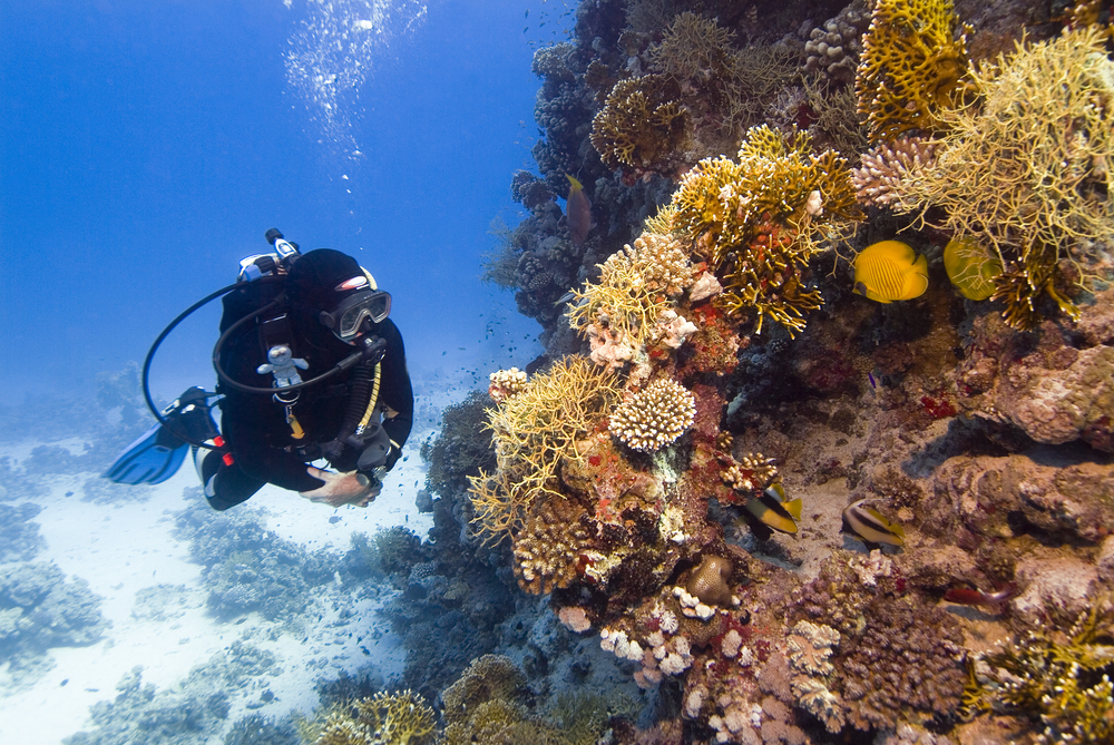 PADI Scuba Diver Specialty Course - Peak Performance Buoyancy